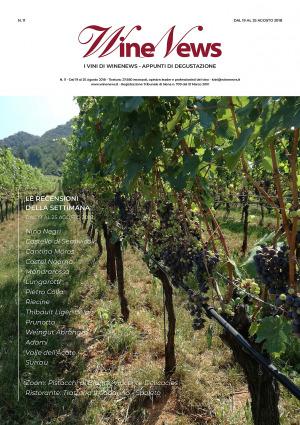 I Vini di WineNews - N. 11