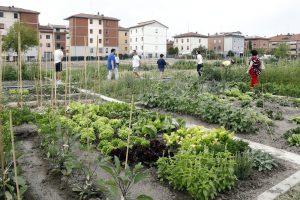 Biodiversità, meno rifiuti, miglioramento del clima, inclusione sociale: benefici degli orti urbani