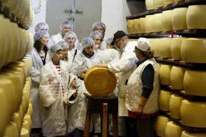 Caseifici Aperti, il Parmigiano Reggiano si racconta ai foodie attraverso 50 produttori