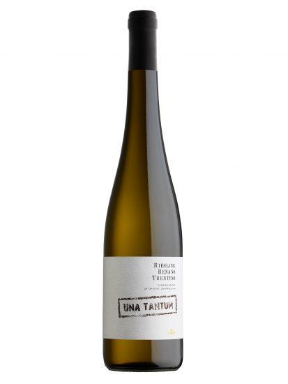 CAVIT, RIESLING RENANO, TRENTINO, Su i Vini di WineNews