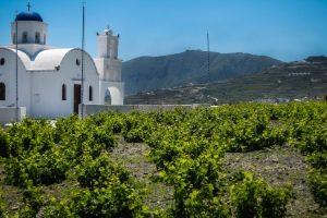 Nella Grecia che esce dalla crisi, via la tassa sul vino, estrema ratio per non fallire