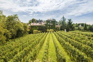 Terra Moretti concludes the Bellavista project and acquires total ownership of the Bellavista hill