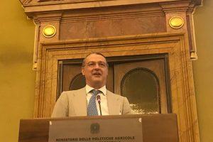 Pau Roca, segretario generale della Fev, futuro nuovo segretario generale dell'Oiv