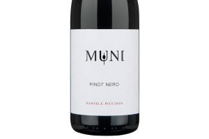 Piccinin Daniele, Veneto Igt Pinot Nero 2016