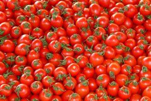 Prezzi delle materie prime in etichetta, da Terra Madre la proposta di Slow Food