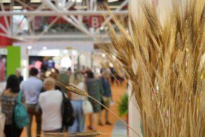 Bio-boom: mercato italiano a 5,6 miliardi tra vendite interne ed export. Grazie a tanta innovazione