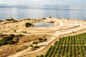 Phoenician Wine Day 2018 con Tasca d'Almerita, sulle tracce del vino dei Fenici, a Mozia