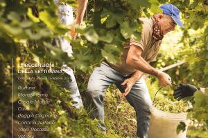 I Vini di WineNews - N. 16