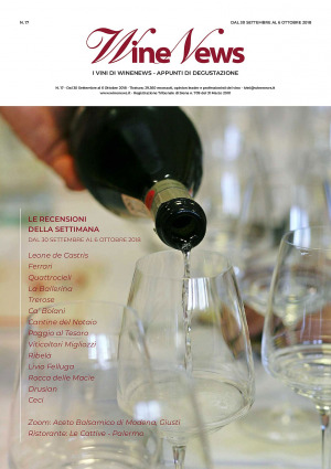 I Vini di WineNews - N. 17