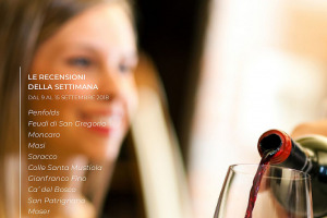I Vini di WineNews - N. 14