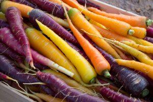 Biodiversità del cibo, grande ricchezza dell'Italia, che però, spesso, non diventa valore