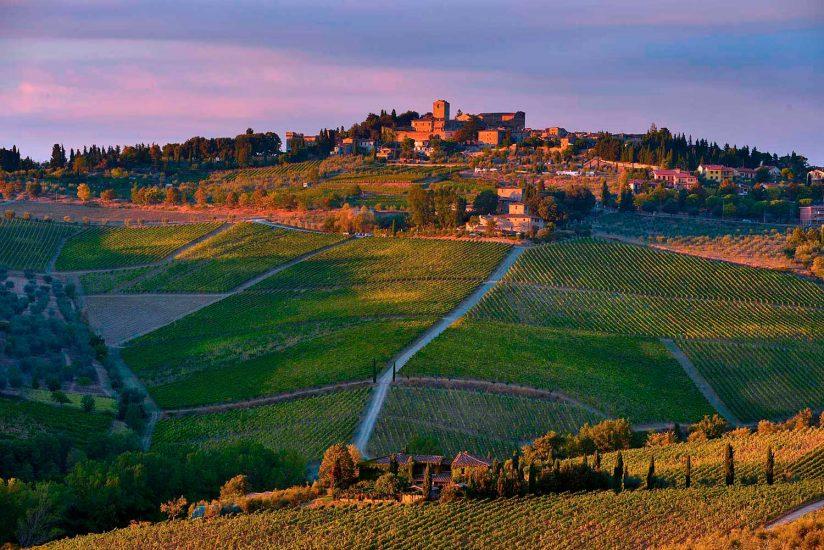 CHIANTI CLASSICO, EDITORIALE, Su i Quaderni di WineNews