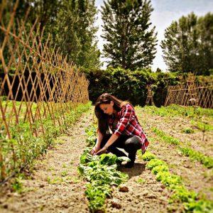 Agricoltura in rosa: secondo Coldiretti, in Italia, 1 azienda agricola su 4 è gestita da donne