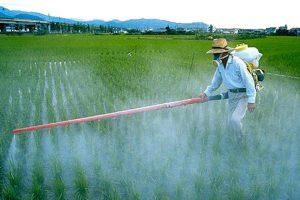 """Il """"monopolio"""" sul mercato degli agrofarmaci e delle sementi della Bayer nel mirino della Coldiretti"""