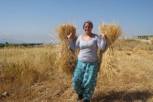 Nell'ultima bozza della manovra economica i terreni agricoli dello Stato alle famiglie con tre figli