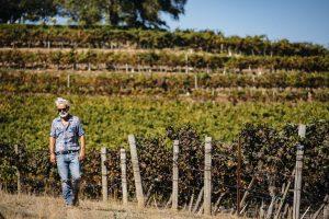 """Francia ed Usa, Sudafrica ed Australia, Cile ed Argentina: """"Simonit&Sirch"""" nelle vigne del mondo"""