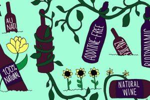 Tra le tendenze che stanno segnando i consumi enoici negli ultimi tempi: i vini naturali