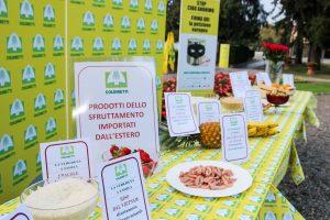 """Il 20% del cibo importato in Italia è """"fuorilegge"""": quando mangiare è anche una questione etica"""