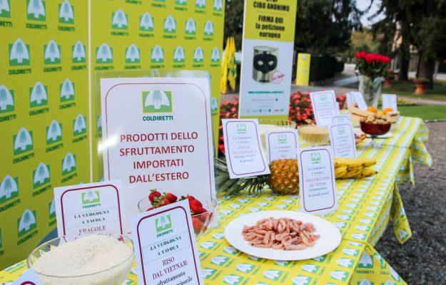 ETICA DEL CIBO, MADE IN ITALY, Non Solo Vino