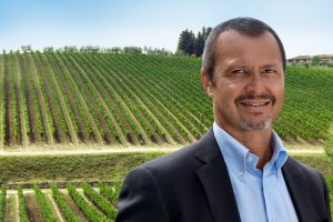 "Ruffino in Prosecco DOC: ""Poderi Ducali Ruffino"" has been founded, through the purchase of 144 hecta"