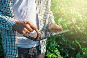 La rivoluzione tecnologica in agricoltura: i dati in Italia dell'Osservatorio Smart AgriFood
