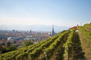La Vendemmia a Torino: il Salotto d'Italia celebra lo storico legame con i grandi vini piemontesi