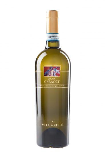 CAMPANIA, FALERNO, VILLA MATILDE, Su i Vini di WineNews