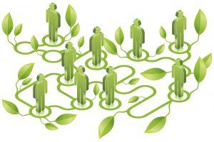 Filiera agroalimentare, outlook positivo: tra il 2018 ed il 2020 cresceranno fatturati e redditività