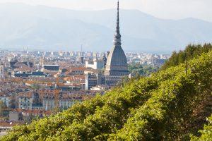 I vigneti urbani si raccontano alla Vendemmia a Torino