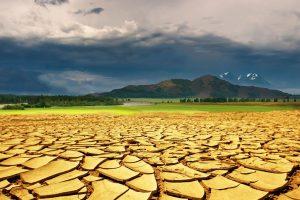 Agricoltori in campo contro il dissesto del territorio: la Cia lancia il suo progetto per l'Italia