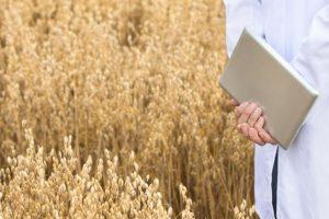Cia: in Italia 1 azienda agricola su 4 ha un sito internet e appena il 5% punta sulla tecnologia