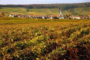 """Niente Italia nei """"Wine Enthusiast Wine Star Awards"""" 2018: Champagne batte Franciacorta"""