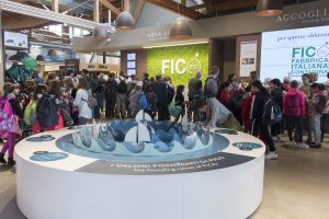 Fico's first year: 2.8 million visitors, 50 million euros turnover