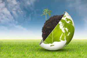L'Italia green promossa in economia circolare, agricoltura biologica ed eco-innovazione