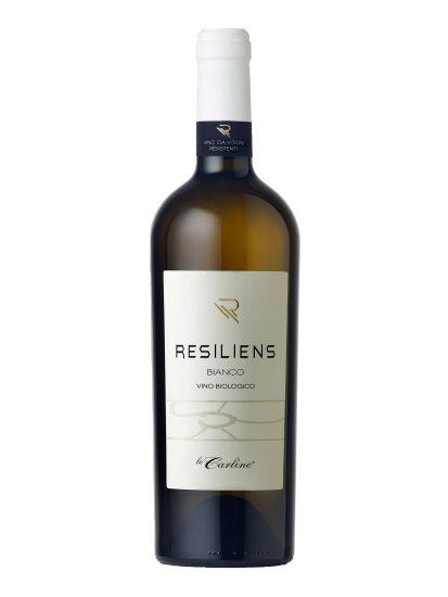 LE CARLINE, PIWI, VENETO, Su i Vini di WineNews