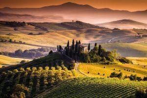 """La storia del vino in Toscana, da mezzadria al """"Rinascimento"""" del Novecento nel segno di Tachis"""