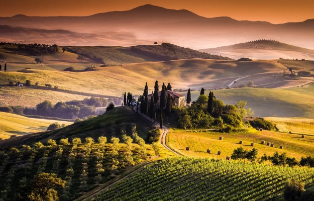 TUSCANY, VINEYARDS, News
