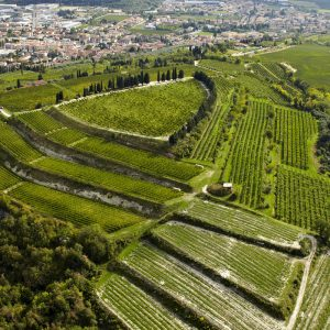 """Agriculture and culture, """"The rural practice of dry stonewalls"""" is Unesco Heritage"""