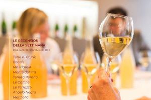 I Vini di WineNews - N. 22