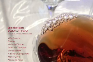 I Vini di WineNews - N. 24