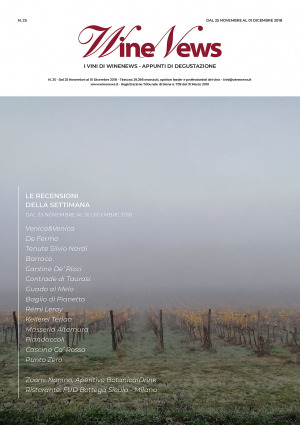 I Vini di WineNews - N. 25