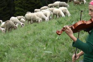 """""""In questo mondo"""", la storia delle donne pastore d'Italia, domani a Roma, con Cia-Agricoltori"""