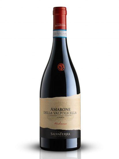 AMARONE, SALVATERRA, VALPOLICELLA, Su i Vini di WineNews
