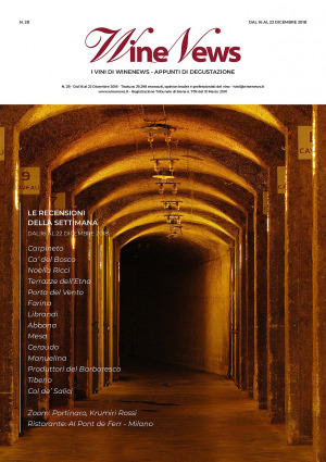 I Vini di WineNews - N. 28