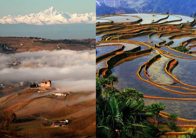 Distanti ma più vicine di quanto si pensi, le Langhe stringono un gemellaggio con le risaie cinesi - WineNews