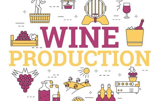 2019, COOPERATIVES, FEDERVINI, FIVI, UNIONE ITALIANA VINI, WINE, News