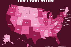 California, Florida, New York, Texas ed Illinois: gli Stati Usa che consumano più vino