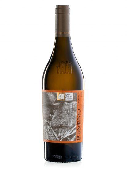 INCROCIO BRUNI 54, MARCHE, TENUTA SANTI GIACOMO E FILIPPO, Su i Vini di WineNews