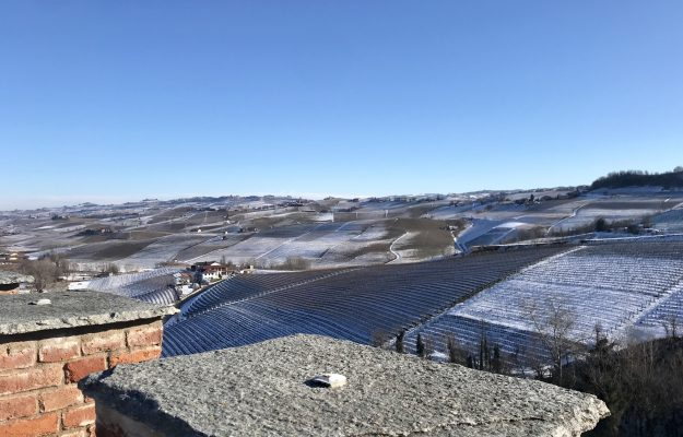 ASCHERI, BAROLO, GRANDI LANGHE, NEBBIOLO PRIMA, VINEYARDS, News