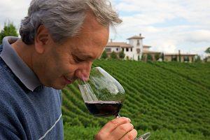 """Più ricerca sul """"potenziale vinicolo"""", sui grandi vitigni autoctoni, e un """"ripensamento"""" del bio"""